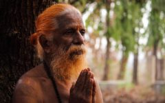 Ciência Revela que a Oração e a Meditação Ajudam a Curar Doenças.