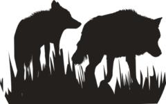A Batalha Entre Dois Lobos