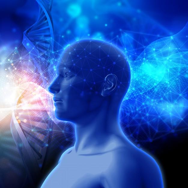 A Medicina da Energia Sutil
